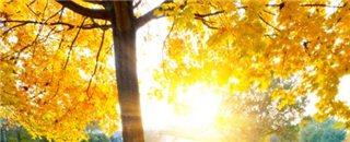 秋天来了,冬天还会远吗?