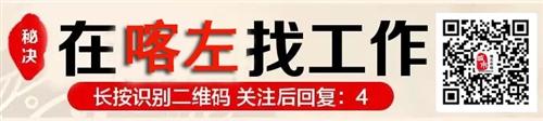 """喀左2017""""春风行动""""大型网络招聘会"""