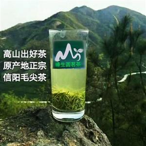 峰生圆茗茶
