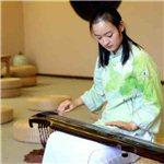 广陵琴筝培训