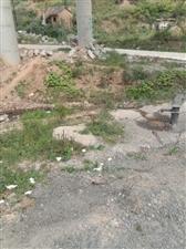 村上的危房和环保