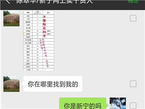 此人黄鹤在新宁网上卖特产诈骗