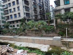 卫生死角严重影响城市创卫