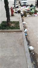 蟠龙南路垃圾无人清理