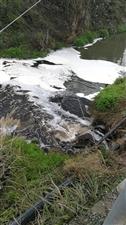 黔江区正阳新城污水处理厂排放污水不达标