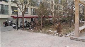 南苑华庭小区垃圾堆积如山,物业不作为