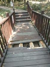 儋阳楼楼梯破败不堪,有很大安全隐�e患!