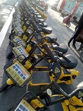 共享电单车在县城投入使用