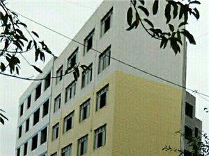 �p��政府部�T眼皮底下的�`法建筑是偶然的�幔�