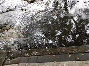 汝州名吃一条街下水道冲开,满街都是污水