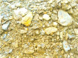 英萃��L石村,用�l村小河挖掘的�L化石泥巴硬化通�l公路,施工方合理�幔�