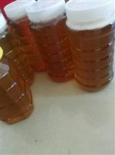 自家养的纯蜂蜜出手,有需要的请联系