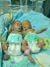 救救他们的女儿