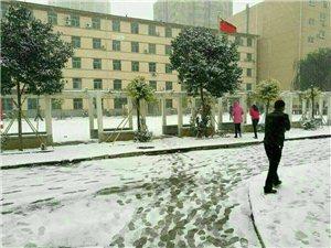 2016年的第一场雪,我是在郑州遇见的!