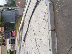 碧桂园十字路口处,不知是哪一个大车把电杆