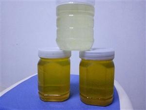 大量纯蜂蜜出售