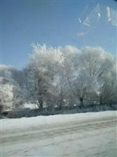 踏实的雪景