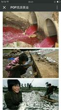 朋友��千�f不要在用自己的身�w�^�V�@�N污染的水!