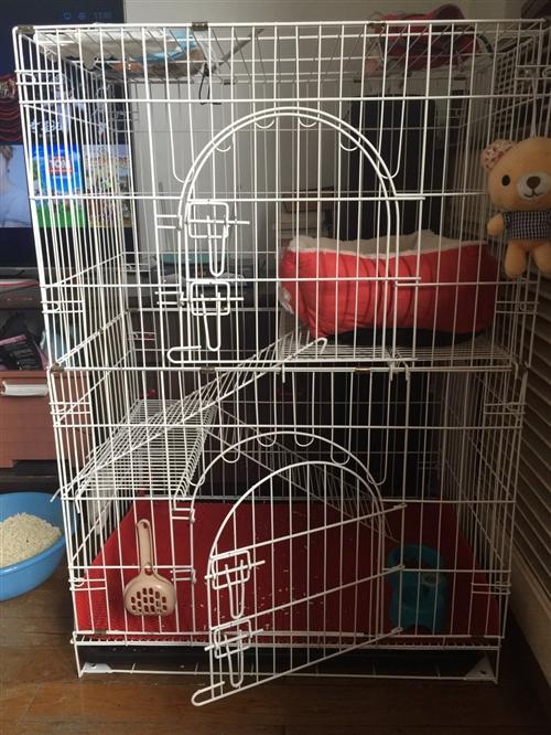 猫咪三层豪华别墅