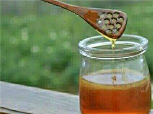 方帅土蜂蜜