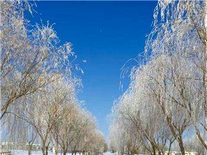 瓜州的雪景