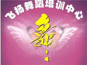 汉川Flying舞蹈春季班火热招生啦