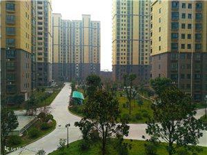 澳门威尼斯人网站县未来城(首山·佳苑)小区建设不错