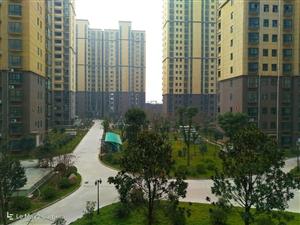 美高梅官网县未来城(首山·佳苑)小区建设不错