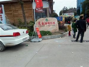通江民胜镇鹦鸽嘴村七彩风车游乐园隆重开幕