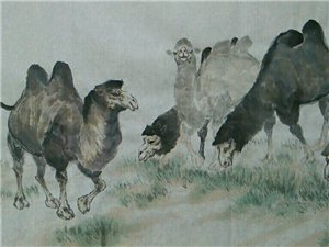 民勤汤希忠国画骆驼《风高雁阵斜》