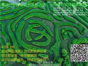 中國戶外探險聯盟菏澤站·爬山虎戶外運動旅