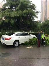 下雨天路滑,走路开车都要注意!千万别成这