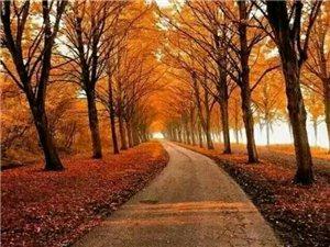 人生,因缘而聚,因情而暖,因不珍惜而散