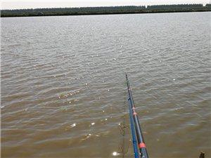 开光作品,环境不错,鱼获也不错??
