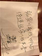 中国著名舞蹈家杨丽萍老师寄语张家川在线网站传递张家川好声音