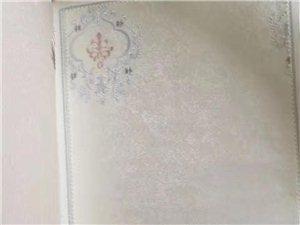 1555壁紙貼滿整個家