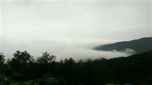 望仙台雾景