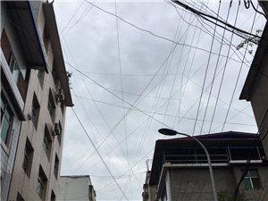 这是有好大的蜘蛛才能织出这么大的网?