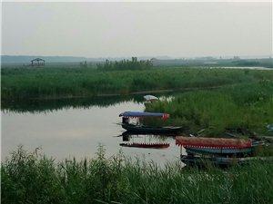 白洋淀堤外�每��村的河道政府部�T�f清理