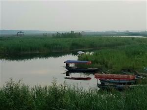 白洋淀堤外边每个村的河道政府部门说清理