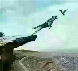 没有飞翔的能力,就应该控制住自己的欲望,