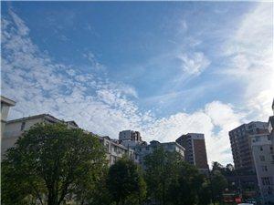 栾川的蓝天白云和小树