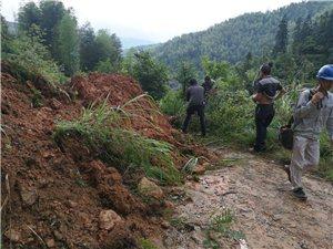 因多天暴雨滑坡导致高梅徐家段线路中断,河口变电所抓紧时间抢修线路,今天中午忙恢复通电。