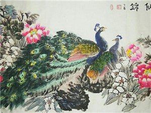 四尺孔雀牡丹