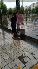 金乡县体委