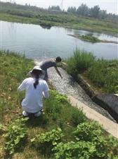 市环保局组织开展全市水环境质量普查行动