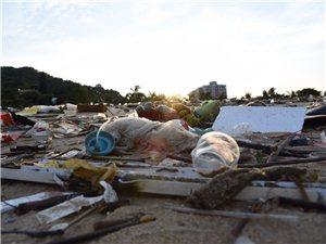 海滨公园对面新填沙滩垃圾成片