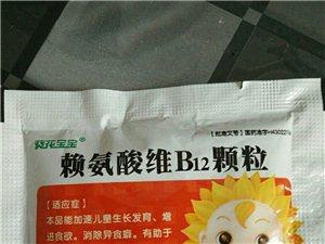�氨酸�SB12