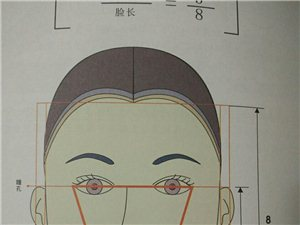 形象设计原理之发型长短设计
