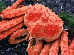 帝王蟹,黄金蟹,肉多,黄多,价格美丽�铭�